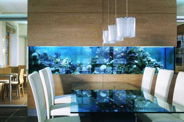 aquarium-mur-creatif